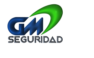 GM Seguridad
